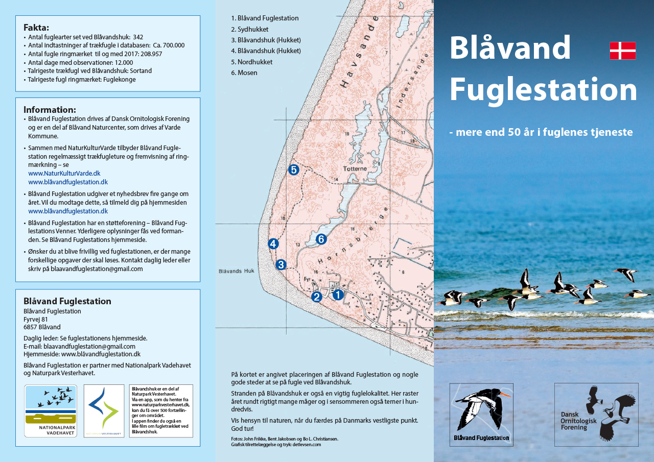 Blaavand Fuglestation Folder 1280